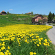 Spring in Emmental, Switzerland - Stock Photo