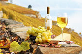 White wine, cheese and grapes on the terrace of vineyard in Lava — Stock Photo