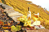 Wineglass and a bottle on the terrace vineyard in Lavaux region, — Stock Photo