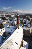 Winter view of Zurich — Foto de Stock