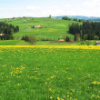 Spring in Emmen valley (Emmental), Switzerland - Stock Photo