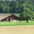 Swiss farm - Stock Photo