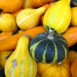 Pumpkins — Stock Photo #21054401