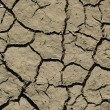 Royalty-Free Stock Photo: Dry soil