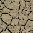 Stock Photo: Dry soil
