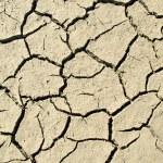 Droughty lake bottom — Stock Photo