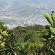 Aerial view of Caracas from Avila  national park — Stock Photo