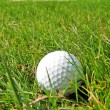Golf ball in the grass — Stock Photo #21087743
