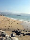 Beach of Valparaiso, Chile — Stock Photo