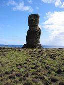 Moai of Easter Island — Stock Photo