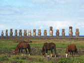 Wild horses against Ahu Tongariki. Easter Island — Stock Photo