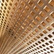 Golden mesh — Stockfoto #21090911