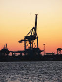 Crane in the port of Genua, Italy — Stock Photo