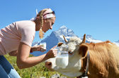 Traveler in the Alps — Stock Photo