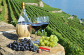 Wine and grapes — Foto Stock