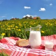 Jug of milk and bread on spring meadow. Emmental region, Swi — Stock Photo #22783190