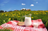 Jug of milk and bread on the spring meadow. Emmental region, Swi — Stockfoto