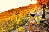 Copo de vinho tinto sobre a vinha em terraço na região de lavaux, swit — Foto Stock