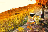 Glass of red wine on the terrace vineyard in Lavaux region, Swit — Stockfoto