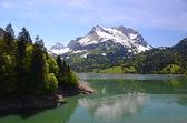 Spring in Switzerland — Stock Photo