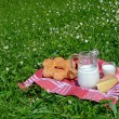 Stock Photo: Milk, cheese and bread served at picnic on Alpine meadow, Swit