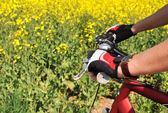 Hands in a gloves on the handlebar of a mountain bike — ストック写真