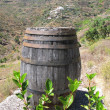 Stock Photo: Wine barrel. Tenerife island, Canaries