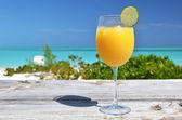Glass of orange juice. Exuma, Bahamas — Stockfoto