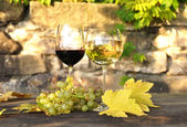 Glasses of wine and a bunch of grapes. Lavaux region, Switzerlan — Stock Photo