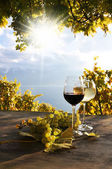 Pair of wineglasses and bunch of grapes. Lavaux region, Switzerl — Stock Photo