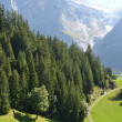 Jungfrau region, Switzerland — Stock Photo