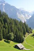 Jungfrau region, Switzerland — Stock Photo