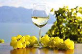 Wine and grapes. Lavaux region, Switzerland — Stock Photo