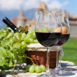 Wine and grapes — Foto de Stock