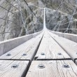 Stock Photo: Trift Bridge, longest 170m pedestrian-only suspension bridge