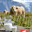 Swiss chocolate and jug of milk on Alpine meadow. Switzerlan — Stock Photo #28546127