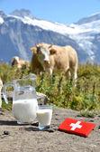 Swiss chocolat et pot de lait sur la prairie alpine. zarifian — Photo