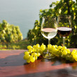 Wine and grapes. Lavaux region, Switzerland — Foto de Stock