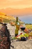 Glass of red wine on the terrace vineyard in Lavaux region, Swit — Stock Photo