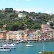 Portofino, Italy — Stock Photo #29801131