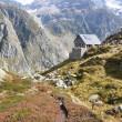 Trekking in Swiss Alps — Stock Photo