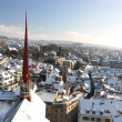 Winter view of Zurich — Stock Photo #31322443