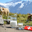 Swiss chocolate and jug of milk on Alpine meadow. Switzerland — Stock Photo #32266155