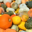Pumpkins — Stock Photo #32352063