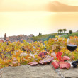 Red wine and grapes. Terrace vineyards in Lavaux region, Switzerland — Stockfoto