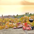 Red wine and grapes. Terrace vineyards in Lavaux region, Switzerland — Stok fotoğraf
