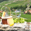 Wine, grapes and cheese against vineyards  — Stock Photo