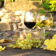 Red wine and grapes on the terrace of vineyard in Lavaux region — Стоковая фотография