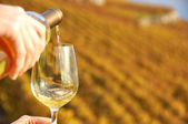 Glass of wine in the hand against vineyards in Lavaux region, Switzerland — Stock Photo