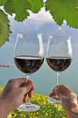 Two hands holding wineglases against vineyards in Lavaux region — Stock Photo